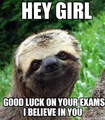 hey-girl-i-believe-in-you-good-luck-on-your-exams