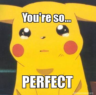 youre-so...-perfect