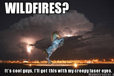 Meme Creator - Funny WILDFIRES? It's cool guys, I'll get this with