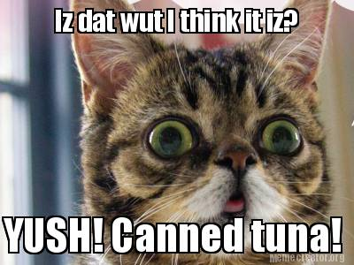 iz-dat-wut-i-think-it-iz-yush-canned-tuna