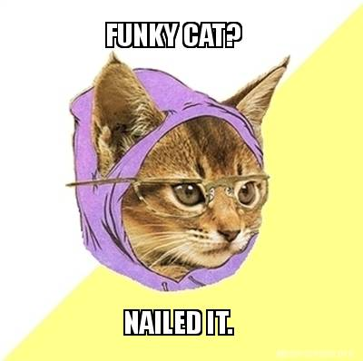 funky-cat-nailed-it