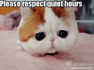 please-respect-quiet-hours