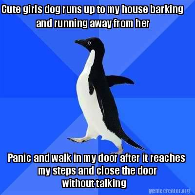 cute-girls-dog-runs-up-to-my-house-barking-and-running-away-from-her-panic-and-w