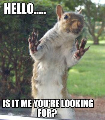 3656864 meme creator squirrel meme generator at memecreator org!