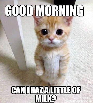 meme creator   good morning can i haz a little of milk meme generator at memecreator org