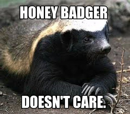 honey-badger-doesnt-care
