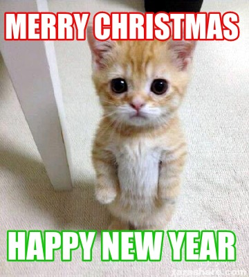 Merry Christmas Cat Pictures