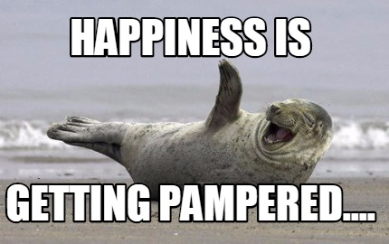 Image result for getting pampered memes