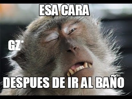 Fotos En El Bano Memes.Meme Creator Funny Esa Cara Despues De Ir Al Bano Gz Meme