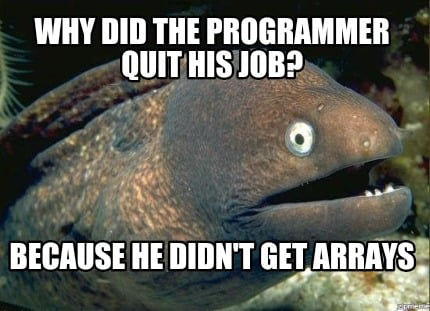 why-did-the-programmer-quit-his-job-because-he-didnt-get-arrays