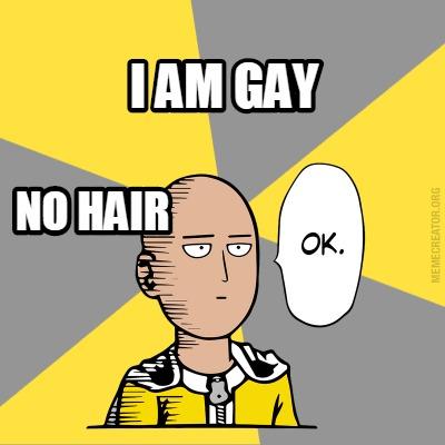 Meme Creator - I AM GAY NO HAIR Meme Generator at ...