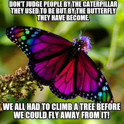 dont-judge-people-by-the-caterpillar-they-used-to-be-but-by-the-butterfly-they-h