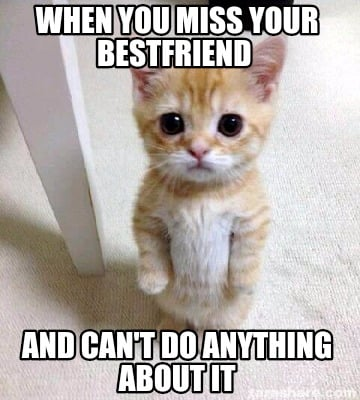 Meme Creator Funny When You Miss Your Bestfriend And Cant Do