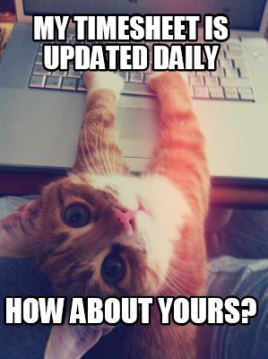 Meme Creator - My Timesheet is Updated Daily How about yours? Meme ...