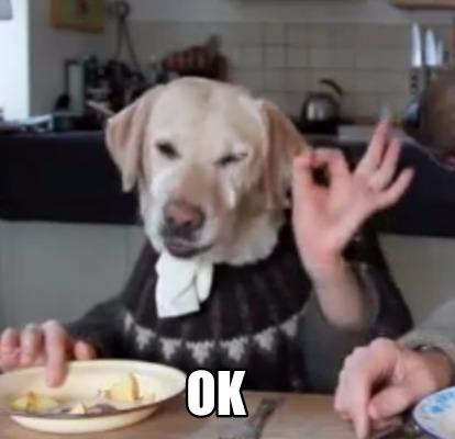 4031042 meme creator ok dog meme generator at memecreator org!