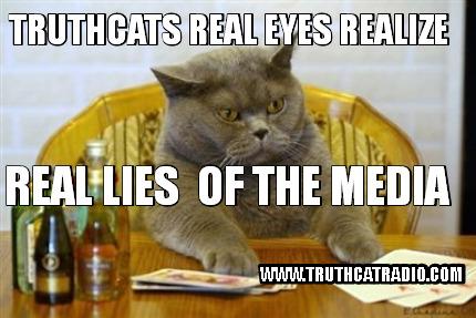 Lies Cat Memes