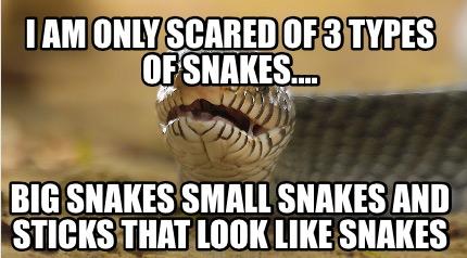 Image result for snake memes