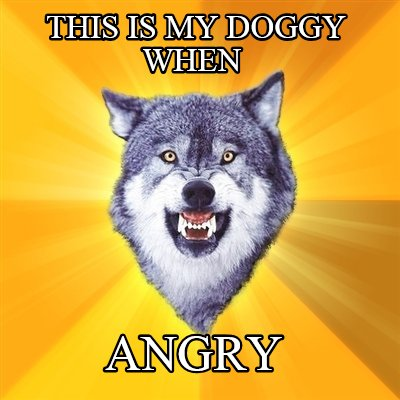 this-is-my-doggy-when-angry