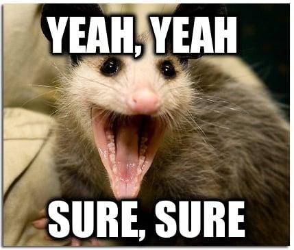 4081402 meme creator possum meme generator at memecreator org!