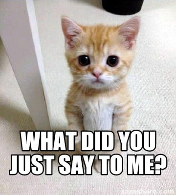 4119785 meme creator cute sad cat meme meme generator at memecreator org!