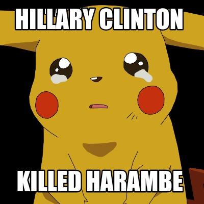 Meme Creator - Hillary Clinton killed harambe Meme ...