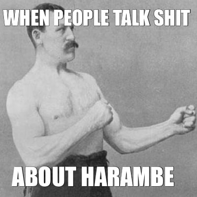 meme creator   when people talk shit about harambe meme