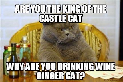 Cat Drinking Wine Meme