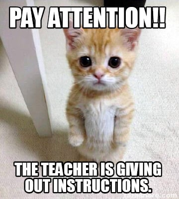 Meme Creator - pay attention!! the teacher is giving out ...