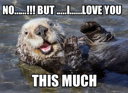 i love you this much cute meme - photo #12