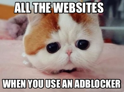 all-the-websites-when-you-use-an-adblocker