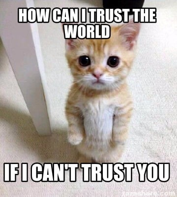 how-can-i-trust-the-world-if-i-cant-trust-you