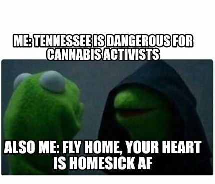 Meme Creator Funny Me Tennessee Is Dangerous For Cannabis