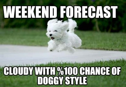 weekend-forecast-cloudy-with-0-chance-of-doggy-style