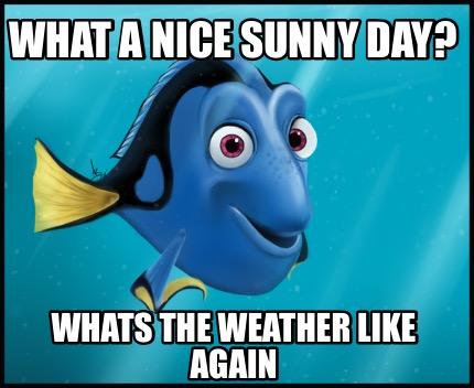 c4e0fe4217 Meme creator funny what a nice sunny day whats jpg 430x352 Sunny meme