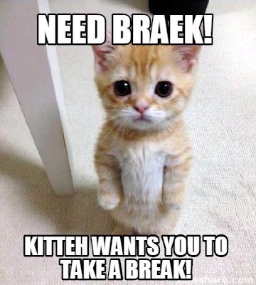 how to break a cat