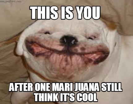 this-is-you-after-one-mari-juana-still-think-its-cool