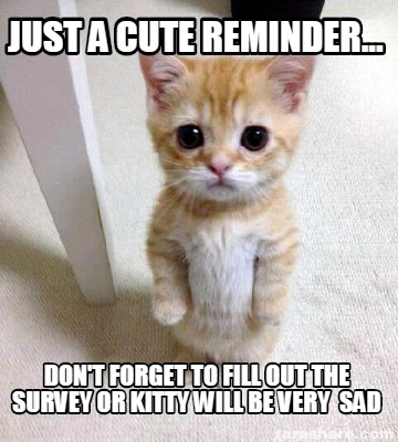 just-a-cute-reminder...-dont-forget-to-fill-out-the-survey-or-kitty-will-be-very0