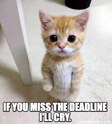 Meme Creator Funny If You Miss The Deadline I Ll Cry Meme