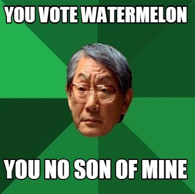 meme creator you vote watermelon you no son of mine meme. Black Bedroom Furniture Sets. Home Design Ideas