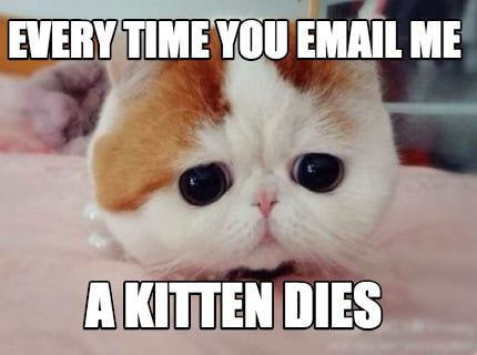 every-time-you-email-me-a-kitten-dies
