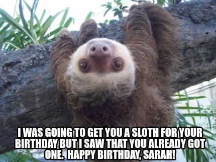 i-was-going-to-get-you-a-sloth-for-your-birthday-but-i-saw-that-you-already-got-