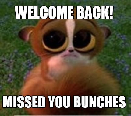 Meme Creator Funny Welcome Back Missed You Bunches Meme