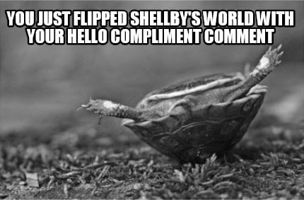 you-just-flipped-shellbys-world-with-your-hello-compliment-comment