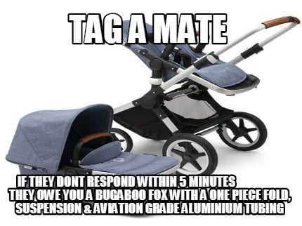 tag-a-mate-if-they-dont-respond-within-5-minutes-they-owe-you-a-bugaboo-fox-with