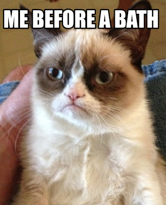 Meme Creator Funny Me Before A Bath Meme Generator At