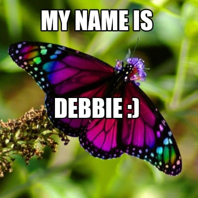 is this butterfly meme generator