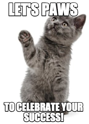 Image result for successful cat memes