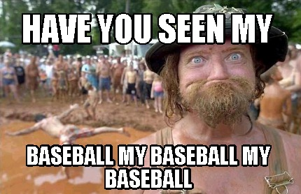 have-you-seen-my-baseball-my-baseball-my-baseball