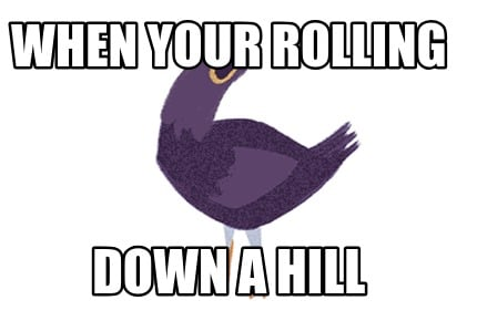 when-your-rolling-down-a-hill