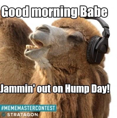 Meme Creator Funny Good Morning Babe Jammin Out On Hump Day Meme